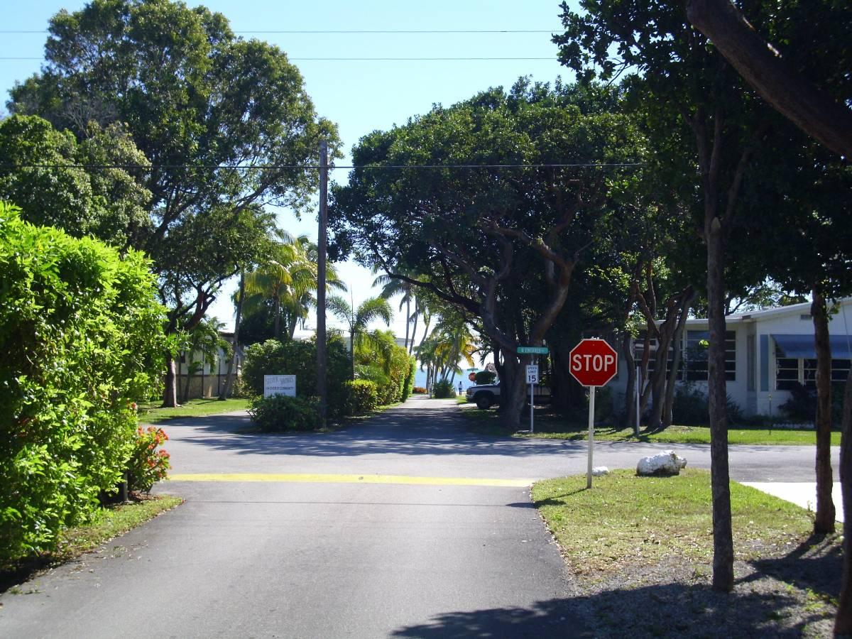 Quiet Street in Silver Shores, Key Largo